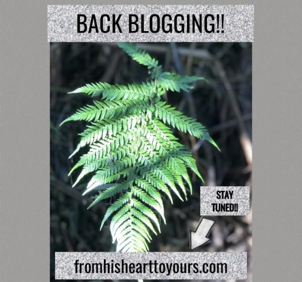 blogging pic back